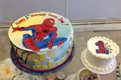 147, 1st birthday, first birthday, birthday, spiderman, spider man, smash cake, red, blue