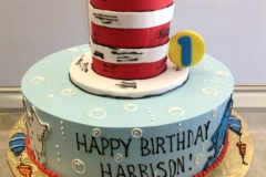 1849, first birthday, 1st birthday, dr seuss, seuss, cat in the hat, horton hears a who, one fish two fish, bubble, bubbles, blue, white, red, tiered