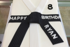 2970, 8th birthday, eighth birthday, black belt, karate, black, white