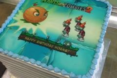 2021, birthday, plants vs zombies, pvz, blue, green, orange, edible image