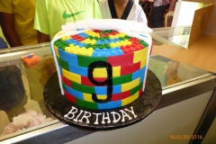 3014, 9th birthday, ninth birhtday, lego, legos, brick, bricks, red, yellow, blue, green
