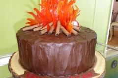 3284, second birthday, 2nd birthday, campfire, fire, camping, brown, orange