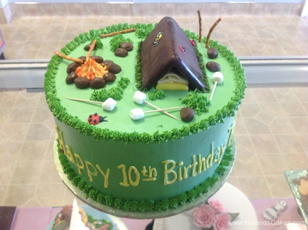 227, birthday, 10th birthday, tenth birthday, camping, green, tent, campfire, fire, marshmallows, ladybug, grass
