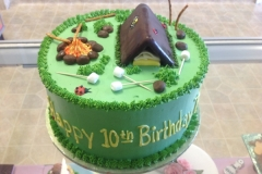 227, birthday, 10th birthday, tenth birthday, camping, green, tent, campfire, fire, marshmallows, ladybug, grass