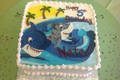 543, 5th birthday, fifth birthday, shark, sharks, ocean, sea, wave, waves, beach, blue