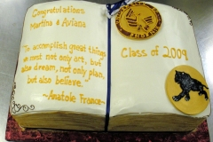 2857, book, carved, logo, college, gold, yellow, blue, white